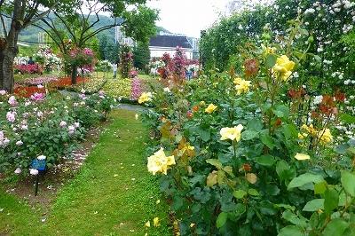 ハウステンボスの庭園3.jpg